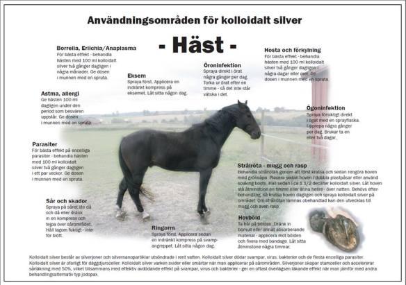 KS på häst