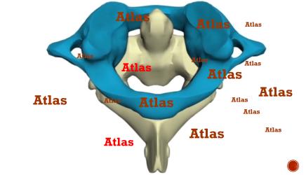 Atlaskota